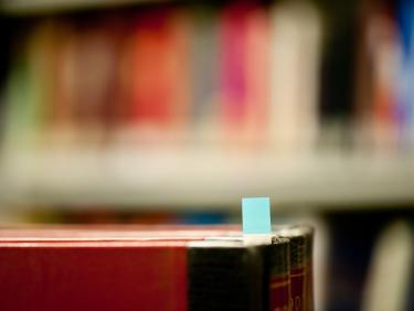 SGF Editionswissenschaft und Textkritik