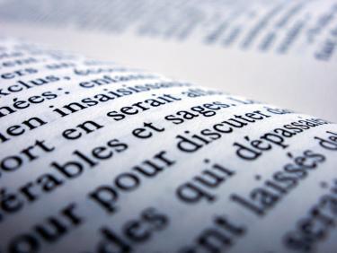 Symbolbild Französisch/Transkulturelle Studien. Literaturen und Sprachkontakte im frankophonen Raum