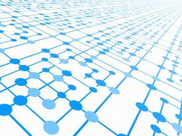 SB Netzwerke und Austausch